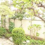 季節を感じられる日本庭園が自慢です